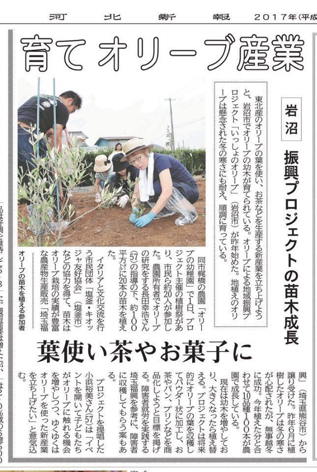 2017年7月6日河北新報掲載「岩沼市にオリーブを植樹」